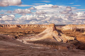 Ustyurt Plateau Kazakhstan — Stock Photo