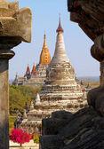 Myanmar Temples Red Tree — Stock Photo