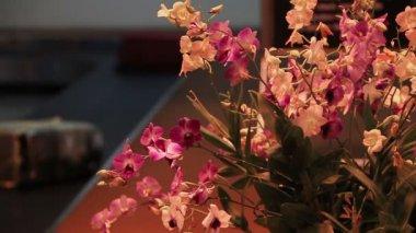 Bagagli aeroporto orchidea — Video Stock