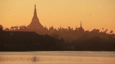 Yangon Shwedagon Sunset Birds — Stock Video