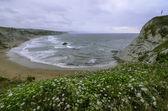 Sopelana beach — Foto Stock