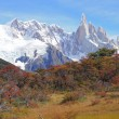 Cerro Torre mountain. — 图库照片