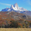 Fitz Roy mountain. — Stock Photo