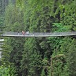 Capilano bridge. — Stock Photo