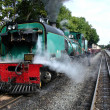 Steam narrow gauge train. — Foto Stock