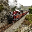 Narrow gauge railway. — Stock Photo