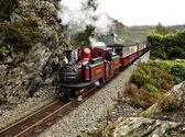 Narrow gauge railway. — Stock Photo