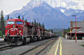 Freight train. — Stock Photo