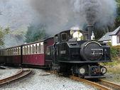 Steam narrow gauge train. — Stock Photo