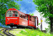 Diesel narrow gauge train. — Stock Photo