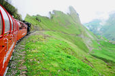 Steam narrow gauge train. — Stock Photo