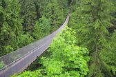 Capilano suspension bridge. — Stock Photo