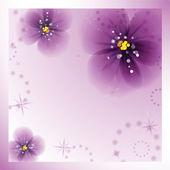 Pansy flores. — Vetor de Stock
