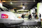 TGV trains. — Stock Photo