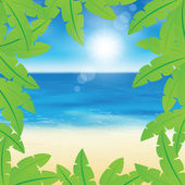 Palm leaves on peaceful sand beach background. — Stock Vector