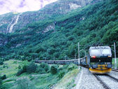 Train from Flam goes to Myrdal. — Stock Photo