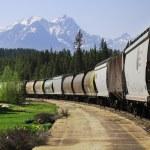 Long freight train. — Stock Photo #51261501