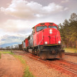 Freight train. — Stock Photo #51702967