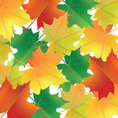 Background with colorful maple leaves. — Stock Vector