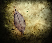Grunge mulberry paper — Photo
