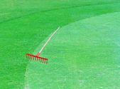 Campo da golf. bel paesaggio verde — Foto Stock