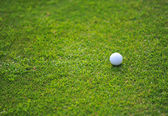 Golf ball on a tee against the golf course with copy space — Stock Photo