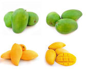 Yellow and green mango isolated on a white background — Stock Photo
