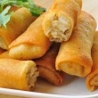 Fried Chinese Traditional Spring rolls food — Stock Photo #28409189
