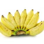 Cultivated banana ripe — Stock Photo