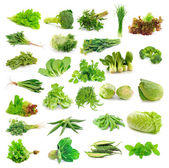 Vegetables collection — Foto Stock