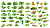 Vegetables collection isolated on white background — Stock Photo