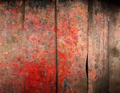 Grunge metal rusty surface texture — Stock Photo