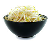 Bean Sprouts in the black bowl — Stock Photo