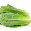 Cos Lettuce on White Background — Stock Photo #37886695