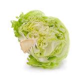 Green Iceberg lettuce on White Background — Stock Photo