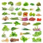 Vegetables set — Stock Photo
