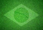 Flaga brazylii jako obraz na zielonej trawie — Zdjęcie stockowe