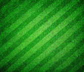 Green grass lined football or soccer field — Stock Photo