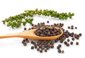 Spoon with Whole Black Pepper Granules and Bunches of fresh gree — Stock Photo