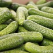 Cucumber in big supermarket — Stock Photo #28853713