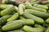 Cucumber in a big supermarket — Stock Photo