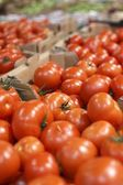 Ripe tomatoes for sale in big supermarket — Stock Photo