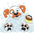 Washing dog on white. — Stock Vector #30334579