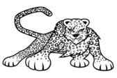 Leopard on white background. — ストックベクタ