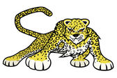 Leopard on white background. — Vector de stock