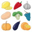 Vegetables and fruits on white background. — Imagen vectorial