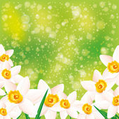 Vector background. Flowers. — Vector de stock