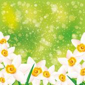Sfondo vettoriale. fiori. — Vettoriale Stock