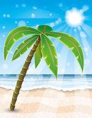 Tropical beach. — Stock Vector