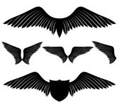 Vector set. Wings. — Stock Vector